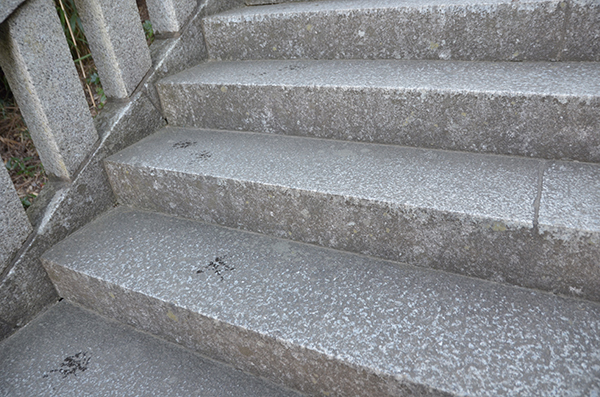 階段濡れてますよ