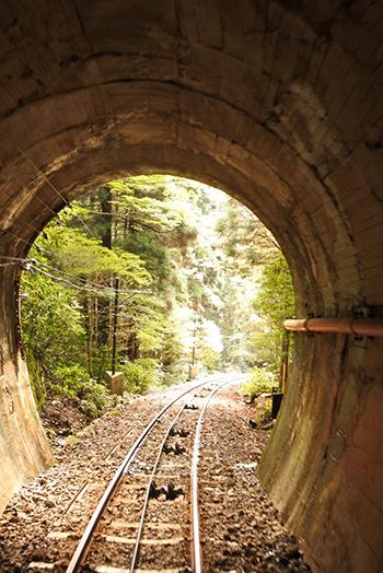トンネル抜けたら緑