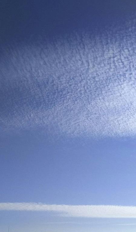 11月16日の夕暮れ時に翼を広げたような美しい空(ミーママ撮影) 2