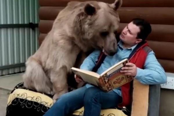ロシアくま2庭先で読書