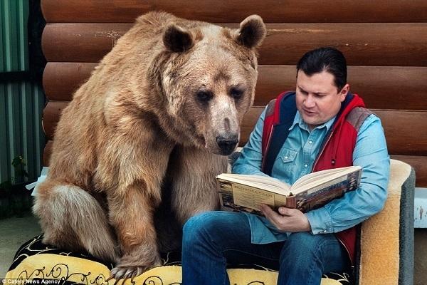 ロシアくま4庭先で読書
