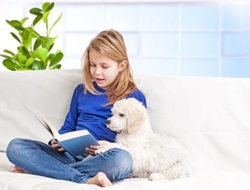 読書介助犬1