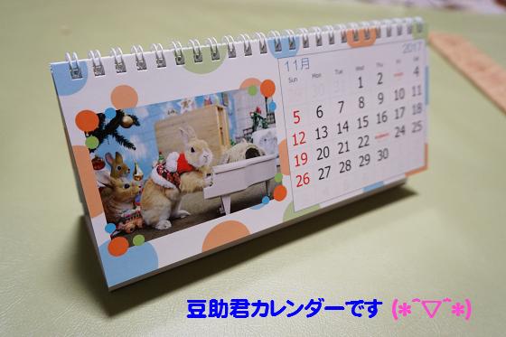 ぴょん子161217_02
