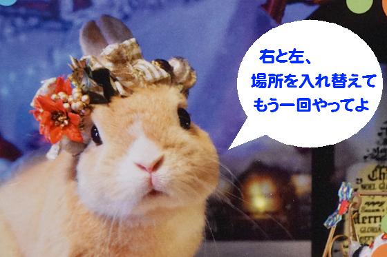 ぴょん子161226_02