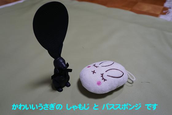 ぴょん子170121_00