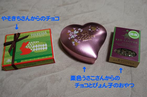 ぴょん子170206_06