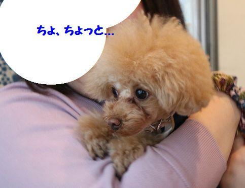IMG_561522.jpg