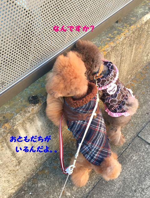 IMG_98742.jpg