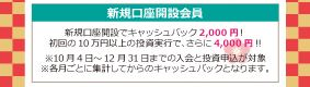 161227 新春お年玉キャンペーンの案内(最新)入会キャンペーン