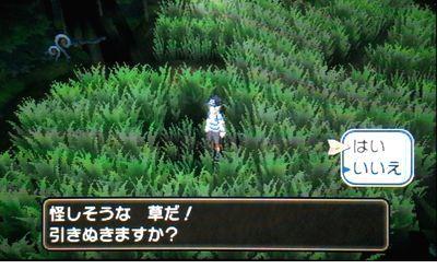 【ポケモン サン・ムーン】シェードジャングル マオの試練 4つの材料の入手場所