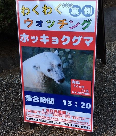 20161226_16.jpg