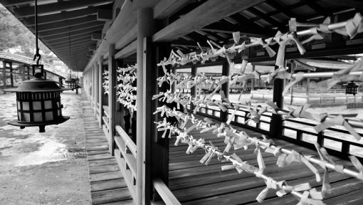 0880厳島神社16111512