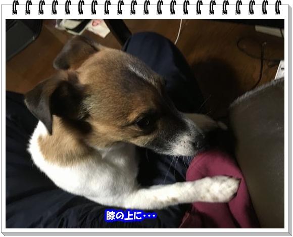 2836ブログNo4