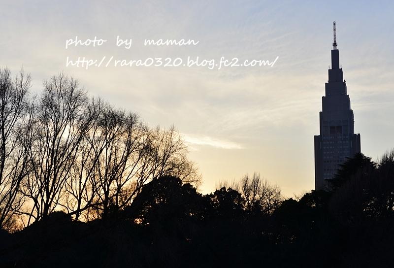 N16_3480 vvv
