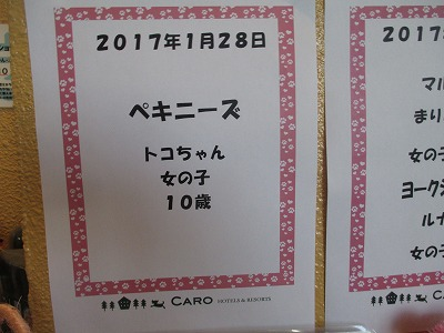 170129 (52)