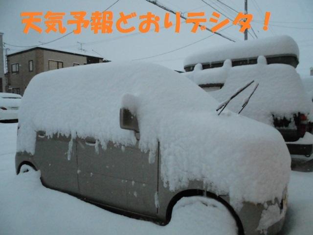 CIMG3698_P.jpg