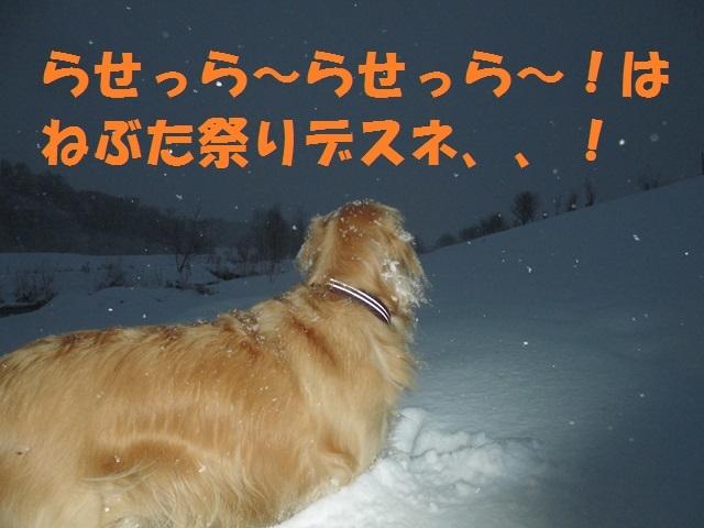 CIMG3757_P.jpg