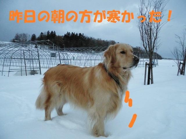 CIMG3834_P.jpg