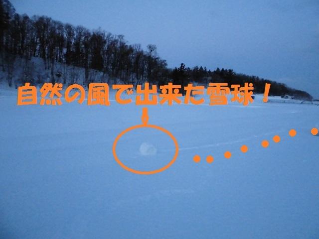 CIMG3904_P.jpg
