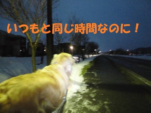 CIMG3910_P.jpg