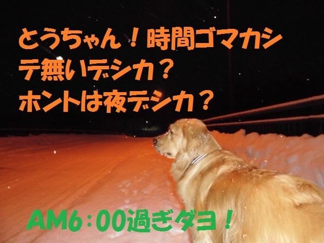 CIMG3975_P.jpg