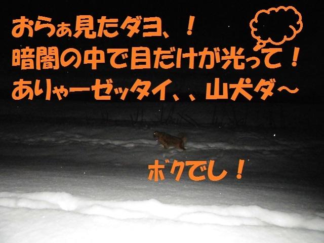 CIMG3979_P.jpg