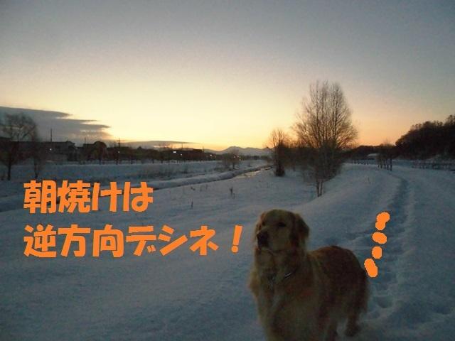 CIMG4052_P.jpg