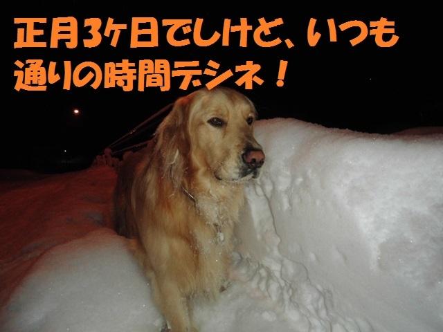 CIMG4121_P.jpg