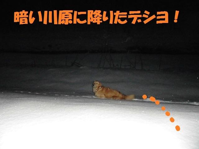 CIMG4127_P.jpg