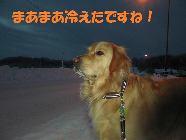 CIMG4146_P.jpg