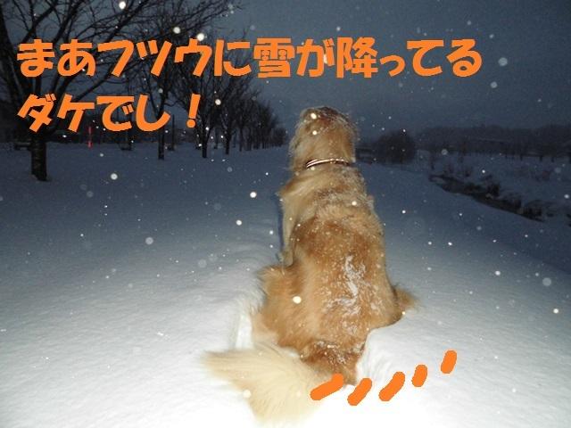 CIMG4154_P.jpg