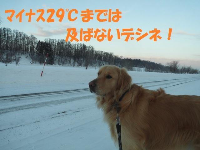 CIMG4170_P.jpg