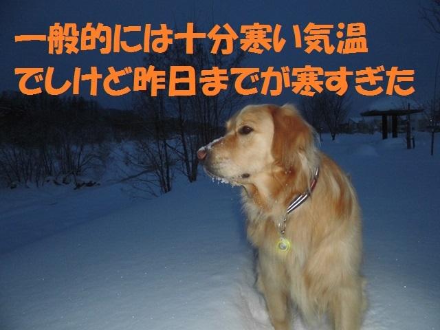 CIMG4179_P.jpg