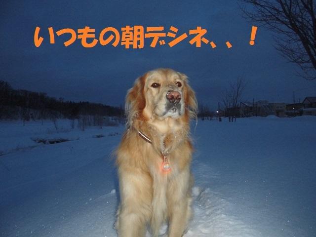 CIMG4183_P.jpg