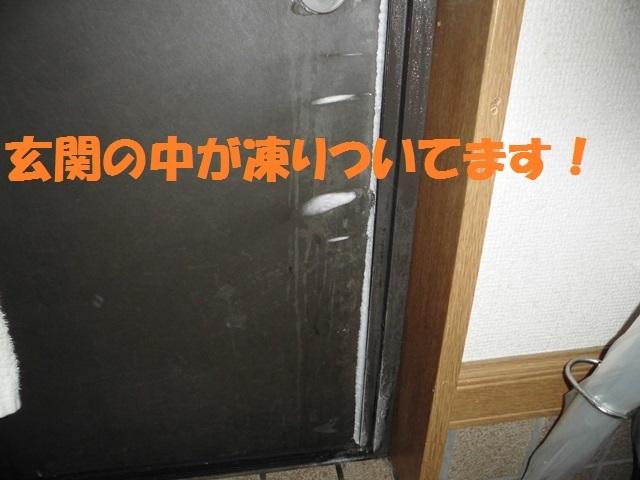 CIMG4209_P.jpg