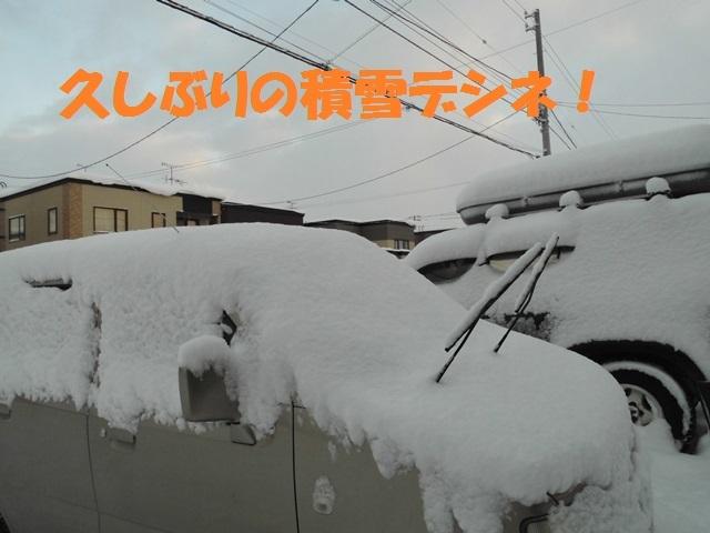 CIMG4234_P.jpg