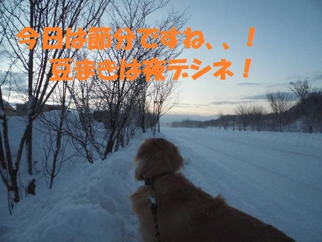 CIMG4256_P.jpg