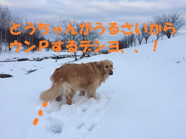 IMG_0512_P.jpg