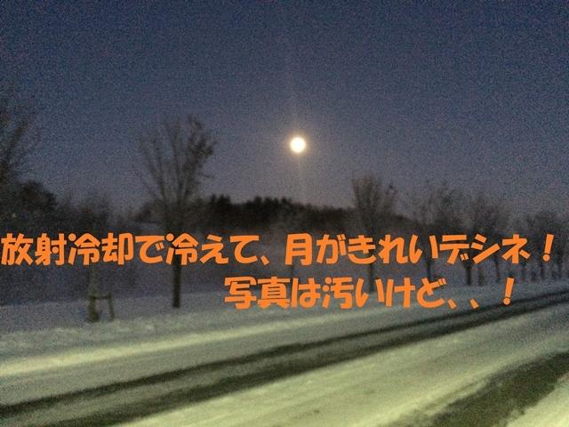 IMG_0636_P.jpg