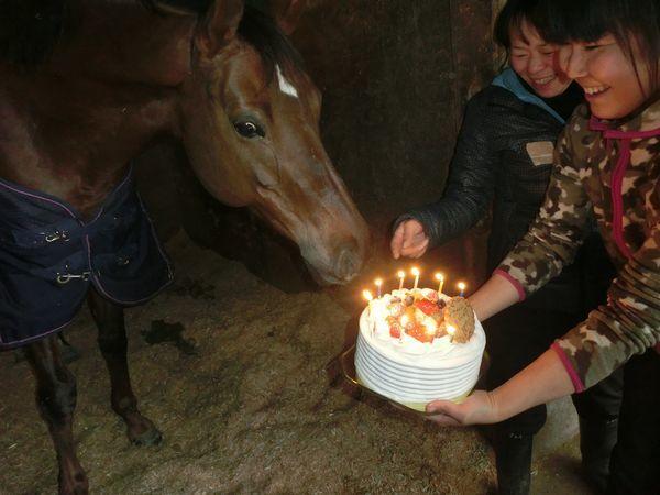 170120 ぷーちゃん10歳の誕生日 (3)