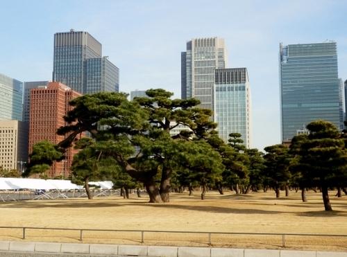 東京 (15)