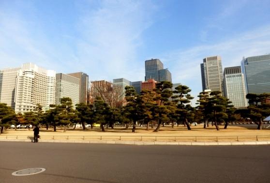 東京 (42)