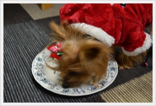 クリスマスDSC_0308-20161224