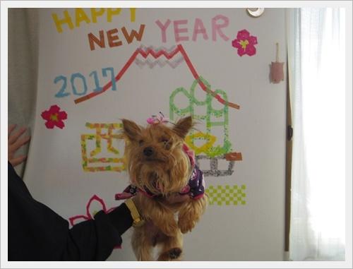 岡山IMGP5459-20120102
