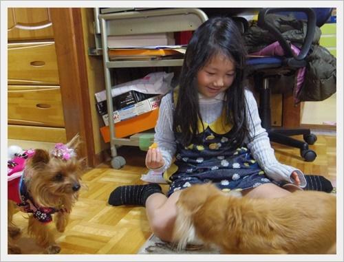 岡山IMGP5468-20120103