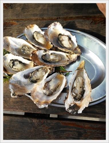 牡蠣食べに行こうIMG00433-20170108