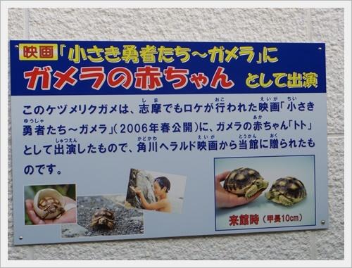 牡蠣食べに行こうIMGP5539-20180701