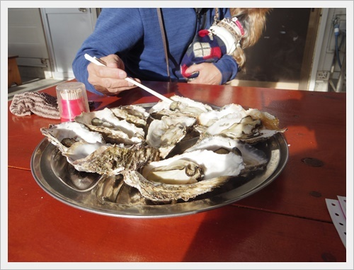 牡蠣食べに行こうIMGP5544-20180701