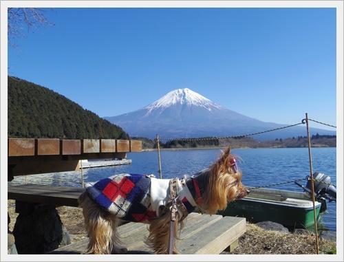 富士山一周IMGP5590-20170402