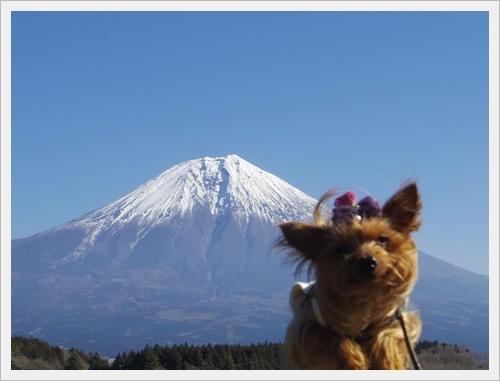 富士山一周IMGP5592-20170402